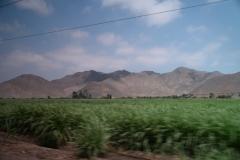 k-DSC_7058 -  Cordillera Negra