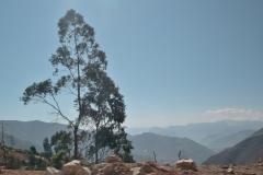 k-DSC_7081  - Cordillera Blanca
